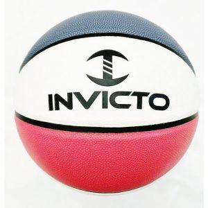 BR1001 Basketball