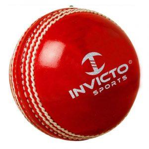 Net Cricket Ball